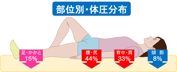 部位別 体圧分布 腰の部分に負担が集中