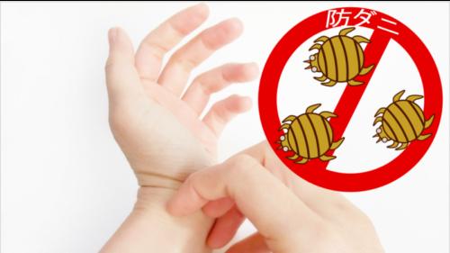 防ダニ対策 アレルギー性鼻炎 アトピー性皮膚炎 気管支喘息