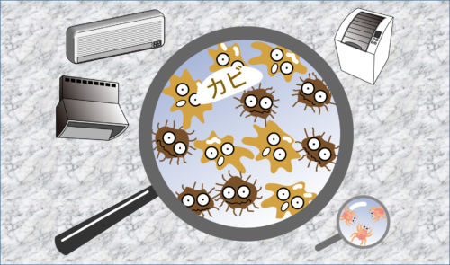 カビ対策 室内の換気 除菌 エタノール 除去と予防 スノコの活用