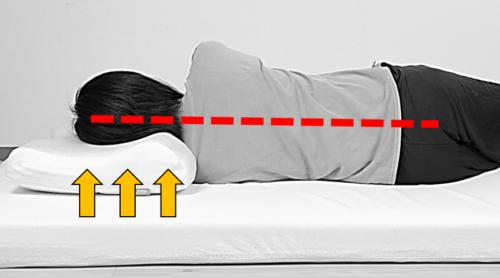 理想の寝姿勢を保持 体圧分散にすぐれ スムーズな寝返り