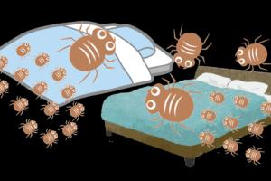 ダニ対策 ダニ捕りロボ ダニピタ君 特殊誘引剤 ダニアレルギー