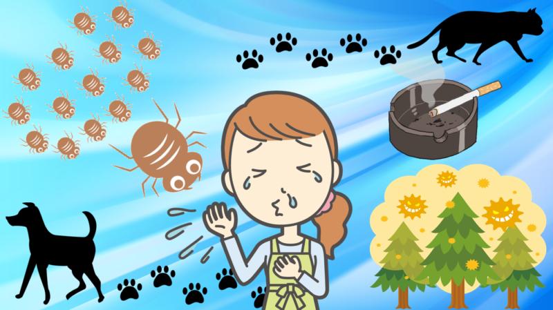 レンタル 空気清浄機 経済的 花粉 ハウスダスト ウイルス除去